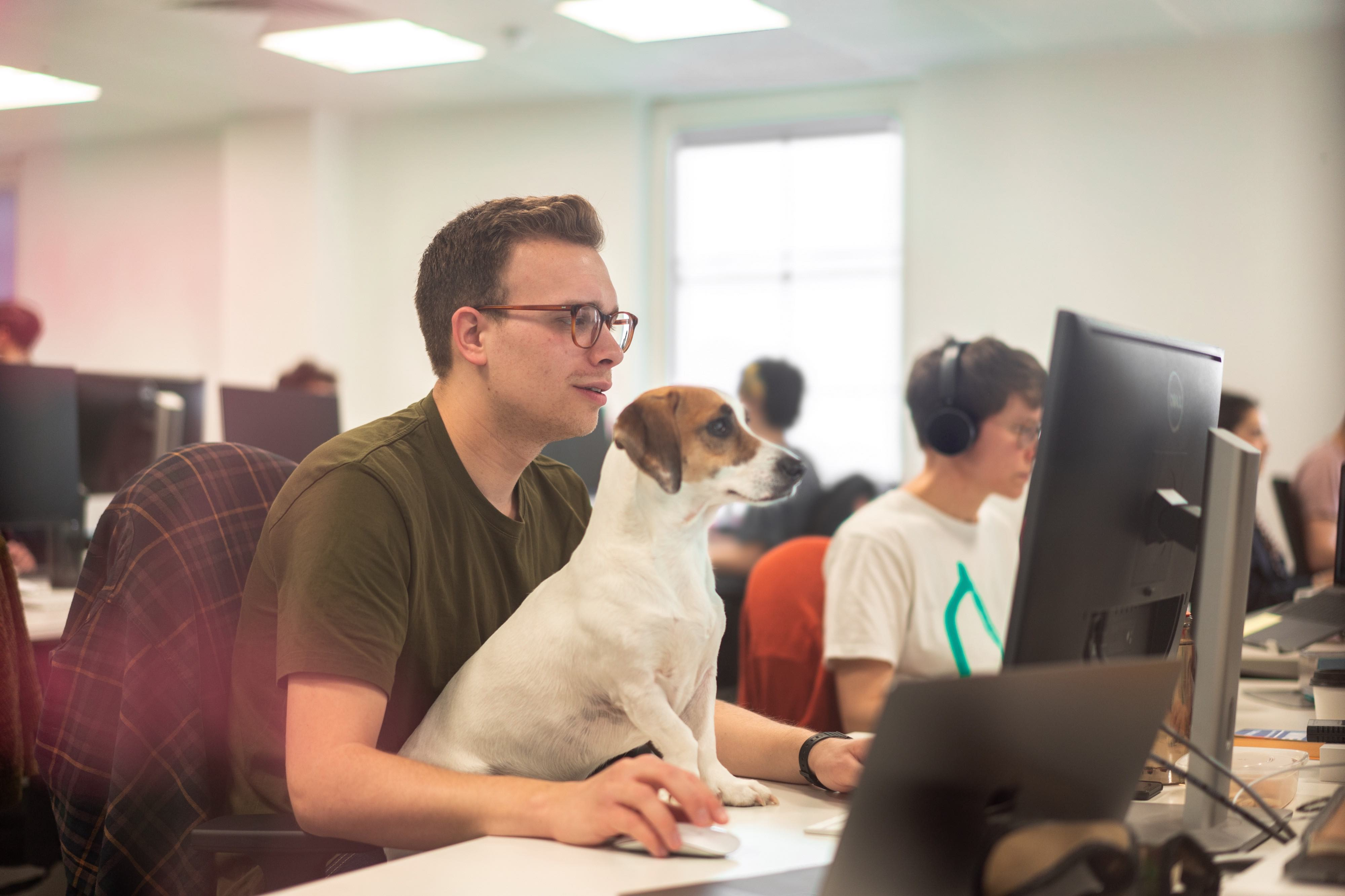 A photo of Dominic at a computer with Albie, his dog, sitting on his lap looking at the screen.